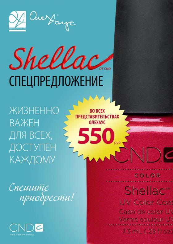 Shellac 550rub itog